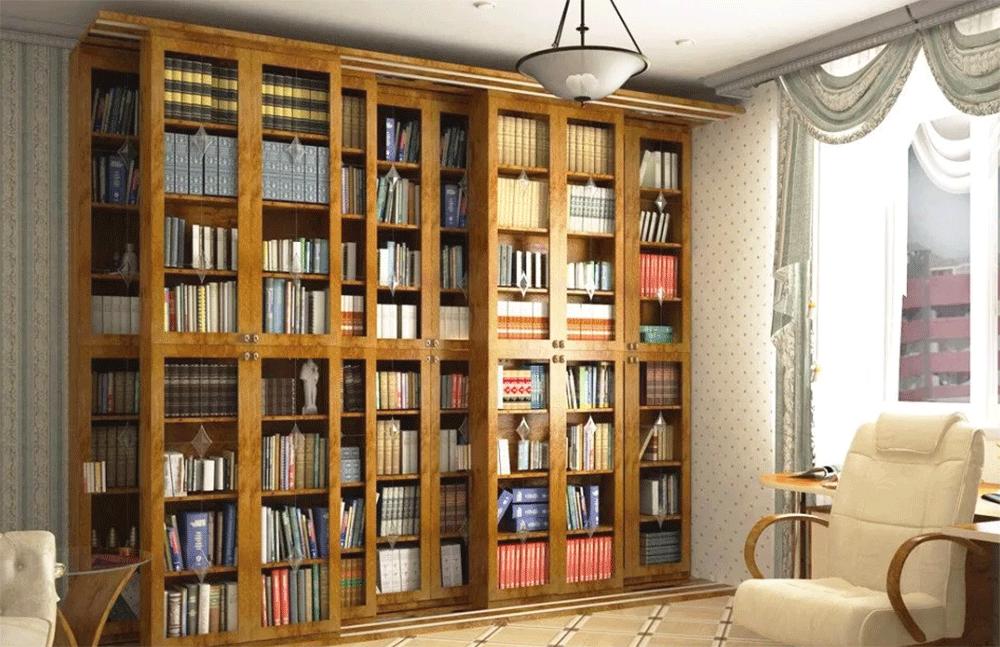 книжный шкаф библиотека